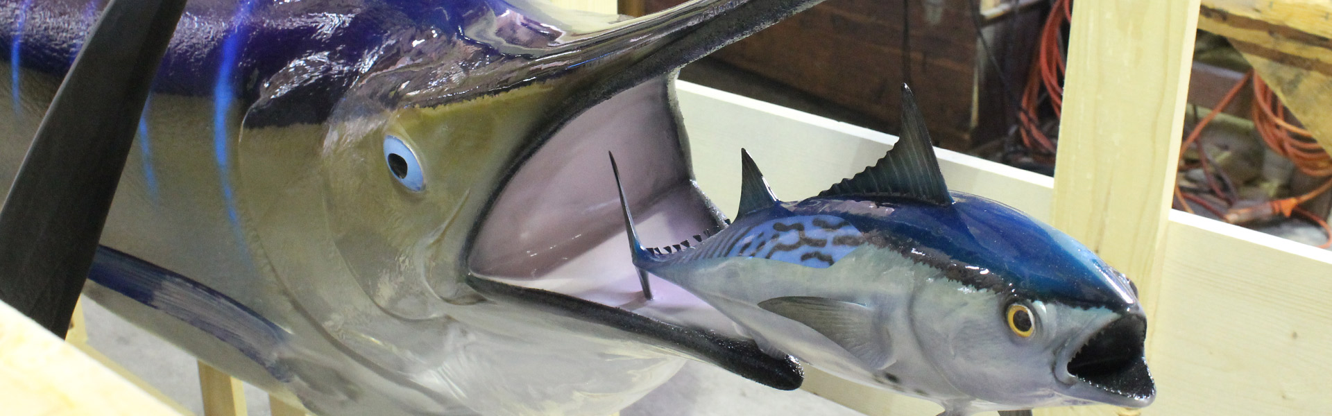 Marlin custom mounted fish
