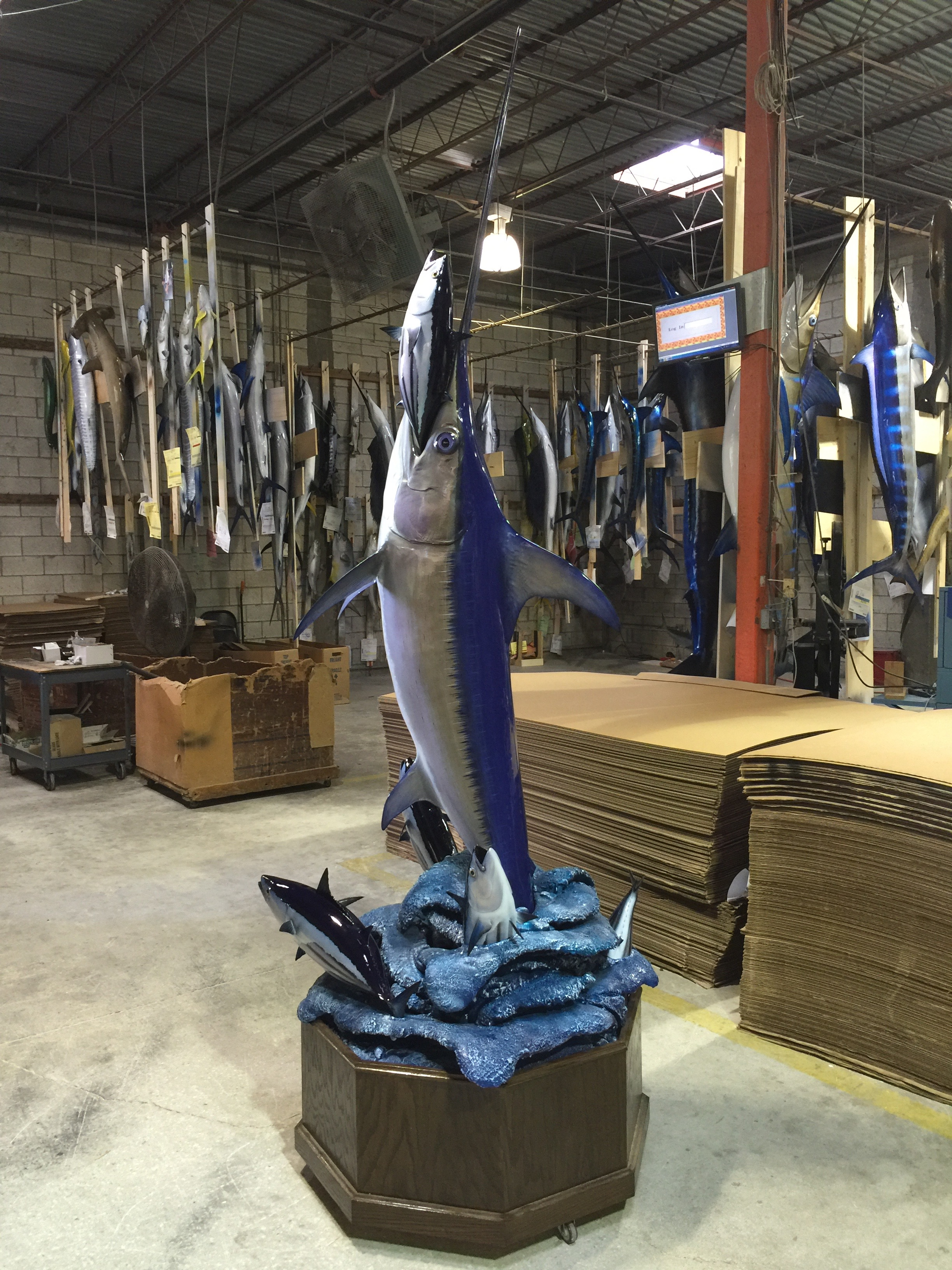 full size swordfish mount