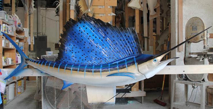 Atlantic Sailfish Mount | Atlantic Sailfish Replica