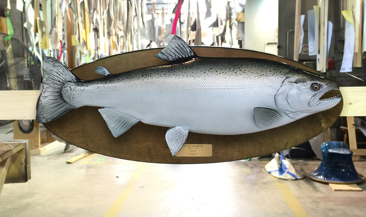 Silver/Coho Salmon Fishmount on wood plaque