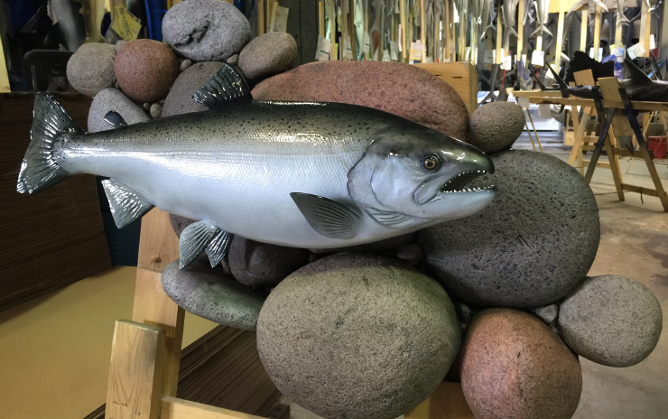 King Salmon Fish Mount