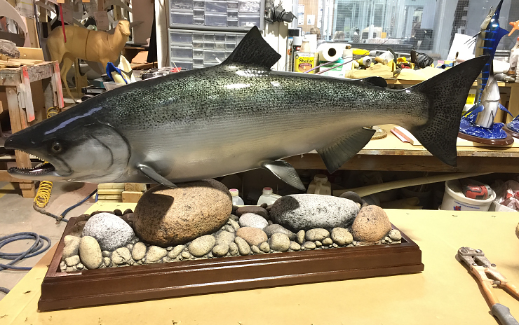 King Salmon fishmount