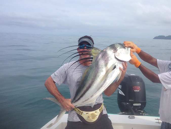 Gray taxidermy customer photos fishmounts and fishing photos for Rooster fish pictures