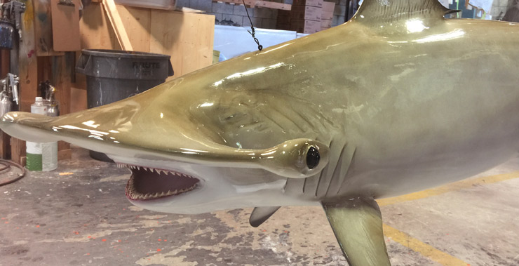 Hammerhead Shark Replica, mounted fish