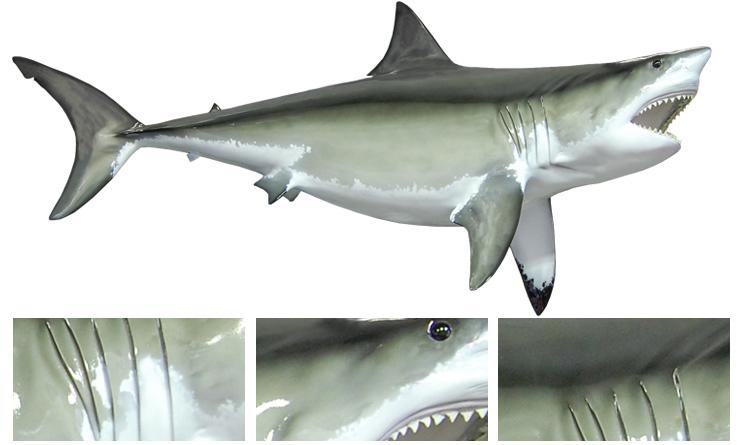 Great white shark fish replica mounted shark for Great white shark fishing
