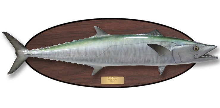 how to catch mackerel fish