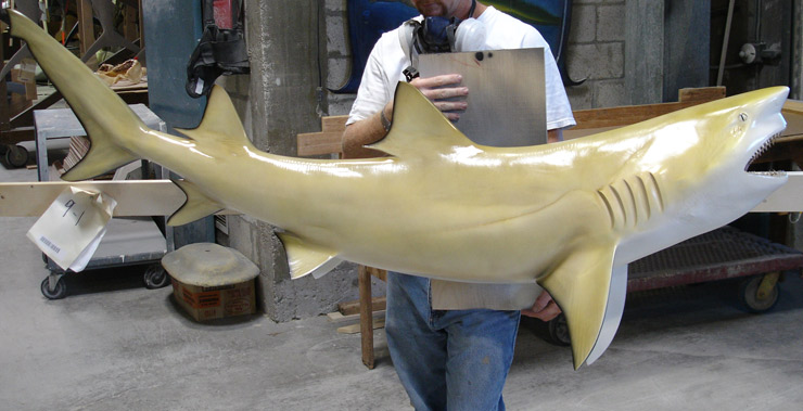 Lemon Shark reproduction