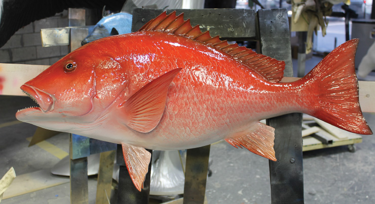 Saltwater Aquarium Fish, Coral & Reef Supplies $ Fresh Frozen Food Delivery. Frozen foods are delivered business days from the day your order ships.