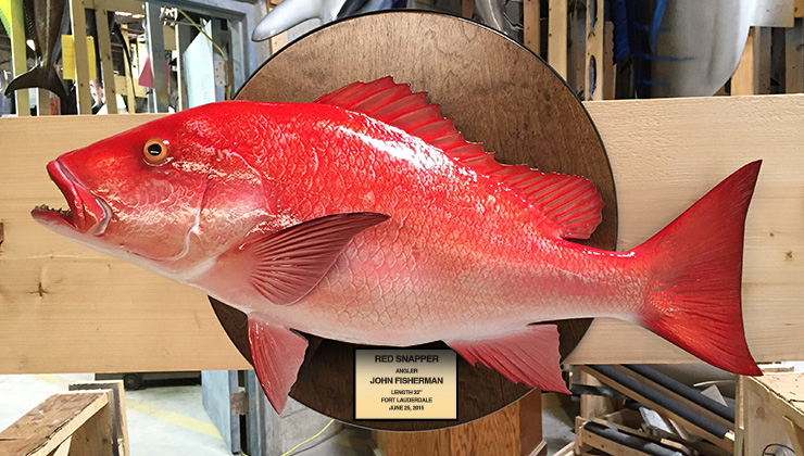 how to clean red snapper fish