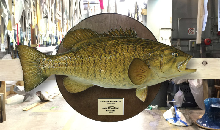 Small mouth bass on wooden plaque