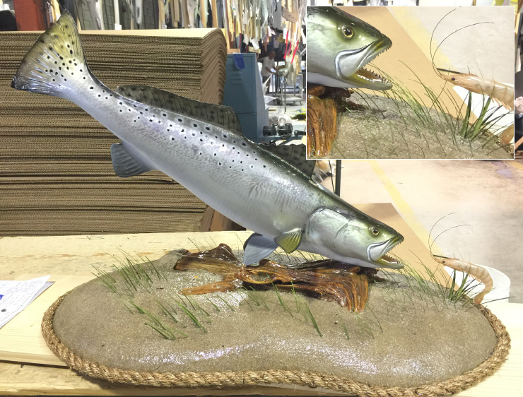 Spotted Seatrout fish on custom base