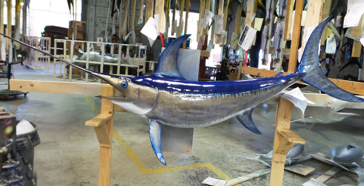 Swordfish mount at Gray Taxidermy