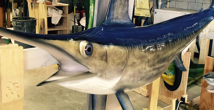 Swordfish mount at Gray Taxidermy shop