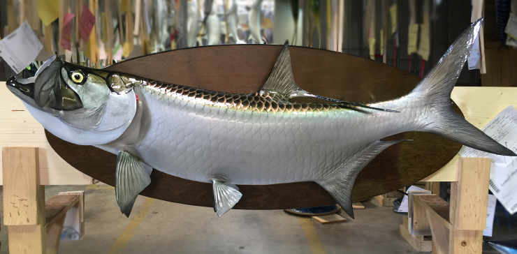 Tarpon fish on custom base