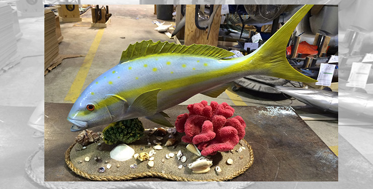 Yellowtail snapper custom mount on wood plaque