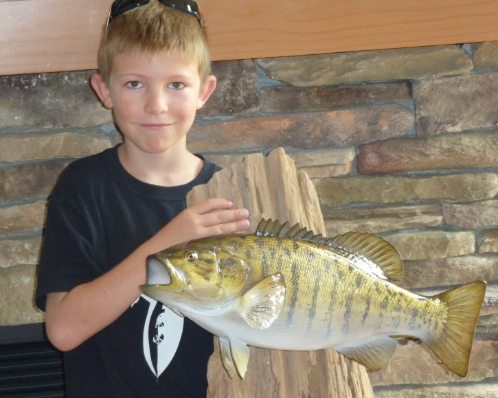 Smallmouth bass from Gray Taxidermy