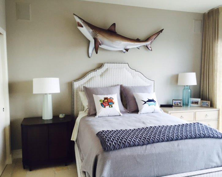 Silky shark from Gray Taxidermy in bedroom
